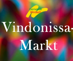 Vindonissa-Markt
