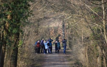 Ornithologische Exkursion in den Auenwald